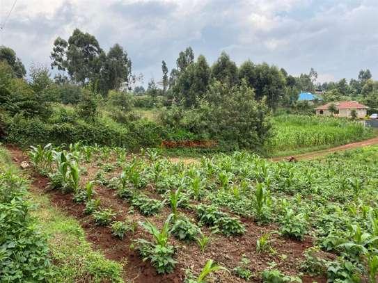 Kikuyu Town - Residential Land, Land image 6