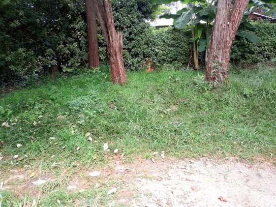 Ruaka - Land image 1