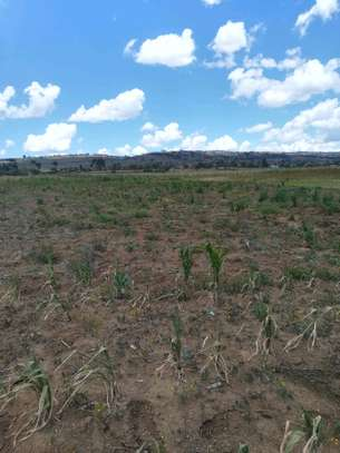 50 by 100 Plots in Naivasha Longonot