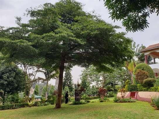 Kileleshwa - House image 3