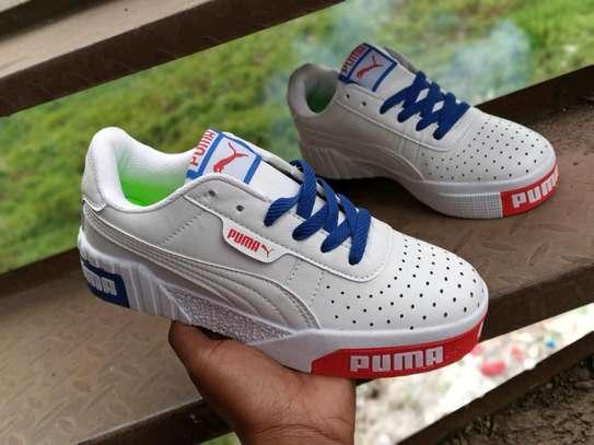 Puma cali image 5
