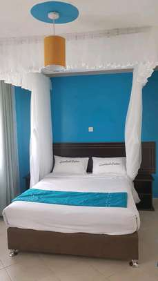 Ceiling mounted mosquito nets image 3