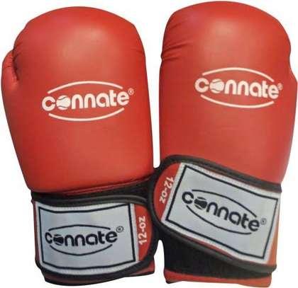 25kg Punching bag + Connate Gloves image 2