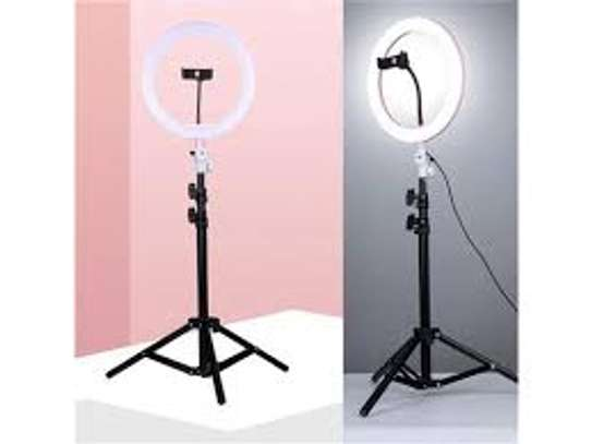 LED Ring Light 10-inch with Tripod Stand and Phone Holder, Flexible Hose, USB Powered image 3