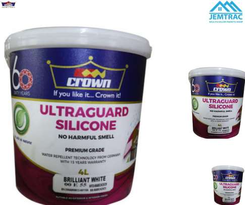 ULTRAGUARD SILICONE 4 LITRES image 1