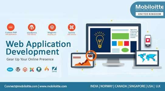 Websites Designer, Developer & web Hosting image 1