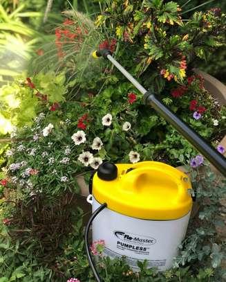 Garden Maintenance Services image 5