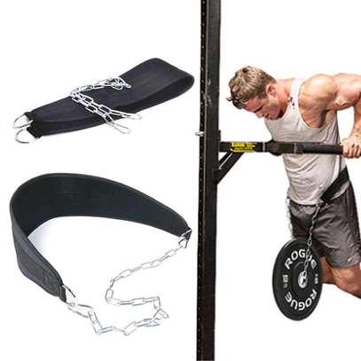 Dip lifting belt image 1