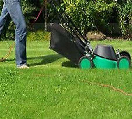 Lawns Care Specialists