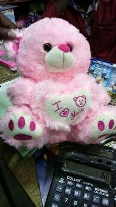 Teddy bear/dolls image 1