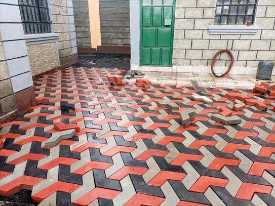 3D Coloured Paving Blocks/ Cabros image 5