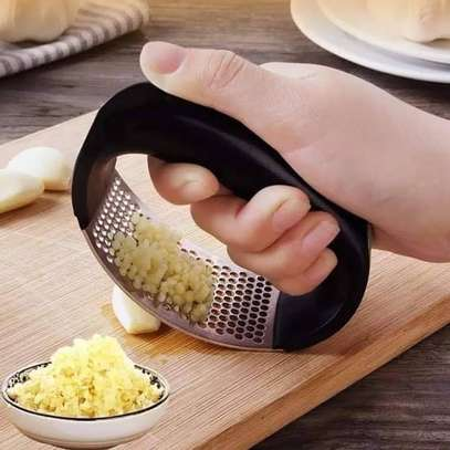 Stainless Steel Curve Garlic Mincer image 1