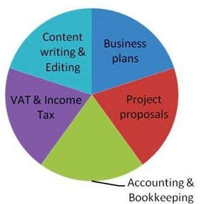 Business Plans,Grant Proposals,Accounting & CV's