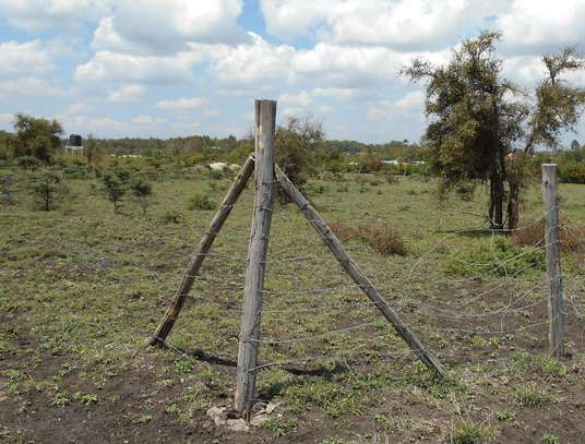 1/8 acre Plots for sale in Kiserian image 3
