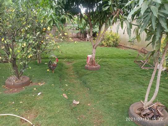 4 bedroom home to let in Muthaiga north image 9