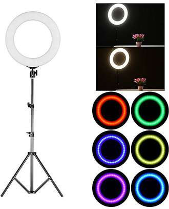 14 inch Photographic Light Ring image 1
