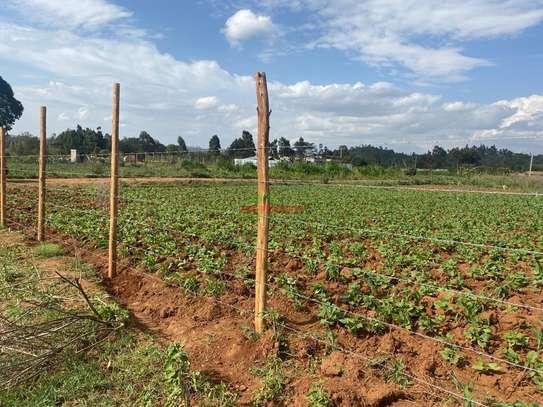0.05 ha land for sale in Kikuyu Town image 8