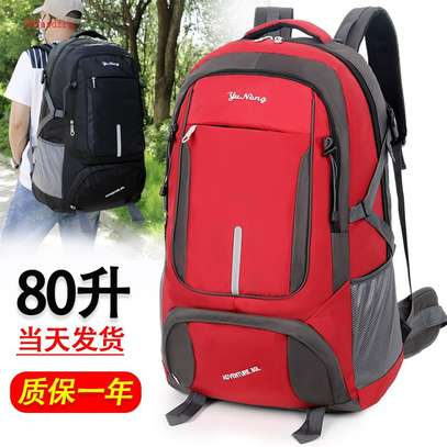 TRAVELLIMG/CAMPING BAGS image 1
