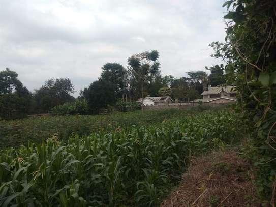 Runda - Land, Residential Land image 5