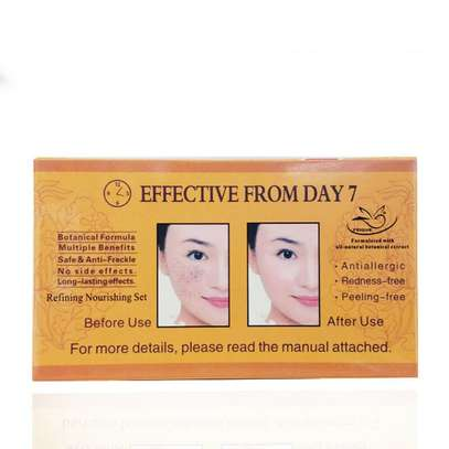 PAPAYA Whitening   Natural botanical formula skin care whitening cream. image 8