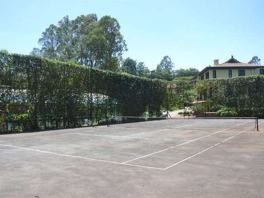 Furnished 4 bedroom townhouse for rent in Spring Valley image 11