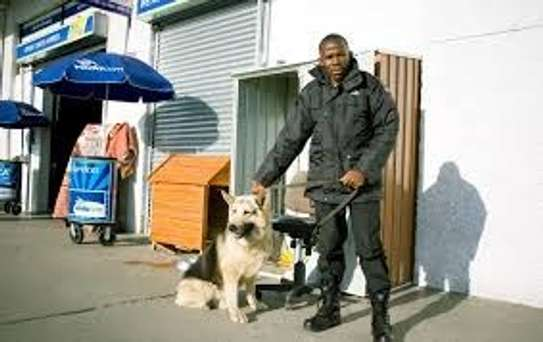 Bestcare Security .The Best Security Guards When You Need Them. image 1