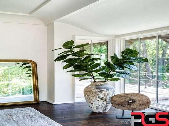 interiors image 1