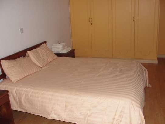 Furnished 3 bedroom apartment for rent in Brookside image 7