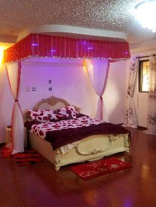 Brand new custom made Rail shears mosquito nets sliding like curtains fixed on the ceiling image 4