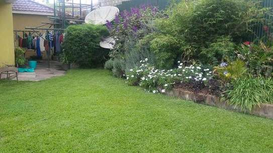 Landscaping image 2