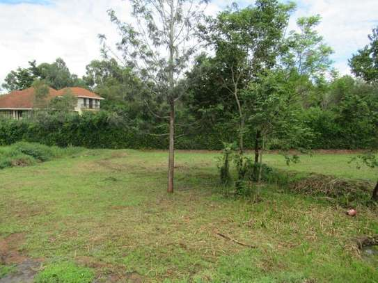North Muthaiga - Land, Residential Land image 16