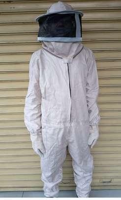 Bee Suit image 1