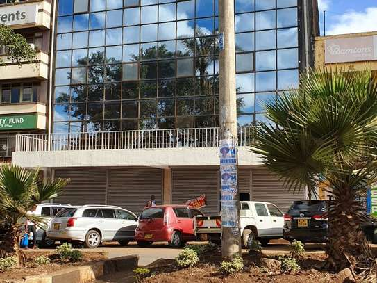 Nyeri Town - Commercial Property