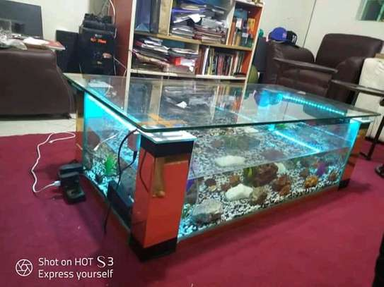 Coffee Table Aquariums. image 7