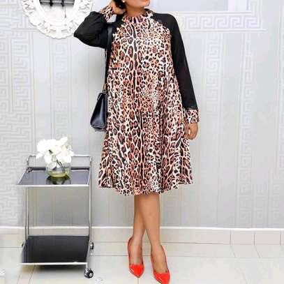 Leopard Print Dress image 1