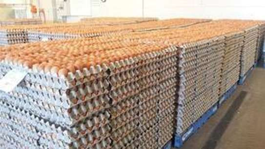 Fresh Brown and White Farm chicken Table eggs image 1