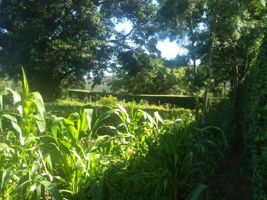1/2 ACRE LAND FOR SALE