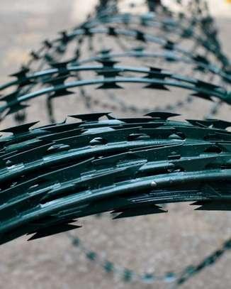 Coloured Razor Wire image 1
