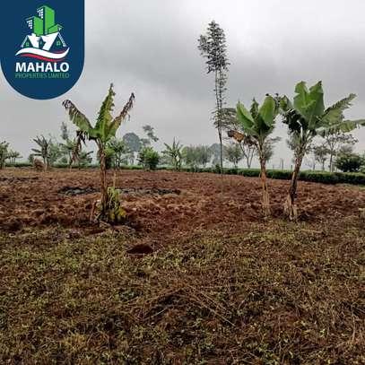 0.5 ac land for sale in Limuru Area image 13