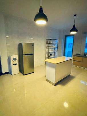 Furnished 2 bedroom apartment for rent in Kileleshwa image 5