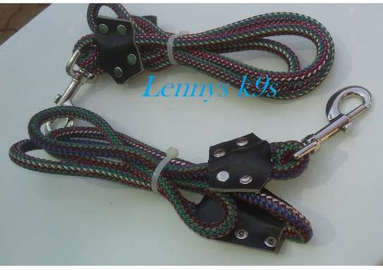 Dog leashes and collars. image 2
