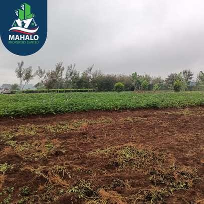 0.5 ac land for sale in Limuru Area image 1
