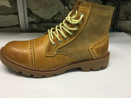 Timberlands latest image 1