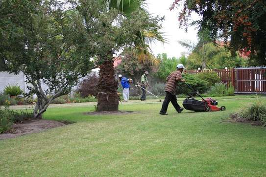 Garden Maintenance Services | Hire Best Gardeners When You Need Them | Contact us today! image 15