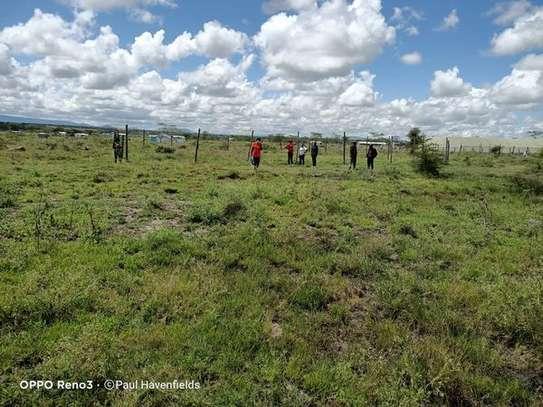 Kanga Lands image 2