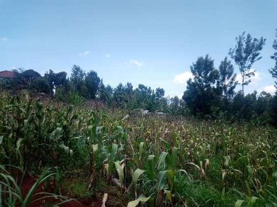 Gatundu South - Residential Land, Land image 5