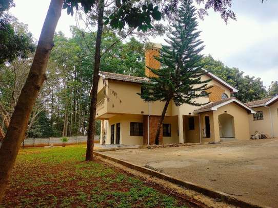 commercial property for rent in Westlands Area image 1