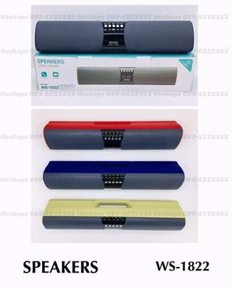 WS-1822 Portable Wireless Speaker, MP3 Player & Radio-Varrying Colors