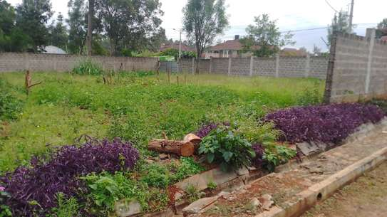 0.5 ac residential land for sale in Thome image 8