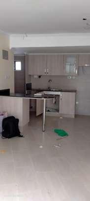 1 bedroom house for rent in Kileleshwa image 12